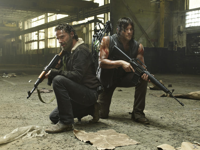 The Walking Dead - Seizoen 5 - DVD