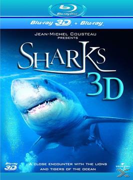 Shark 3D large