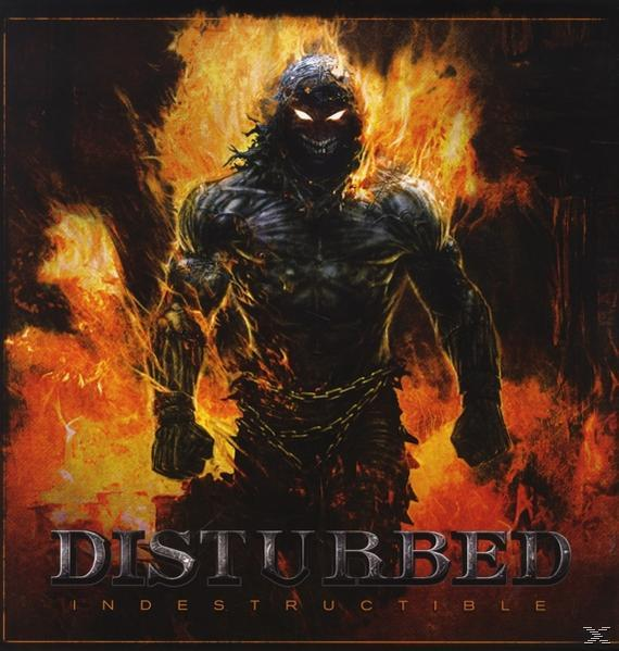 INDESTRUCTABLE (LP)