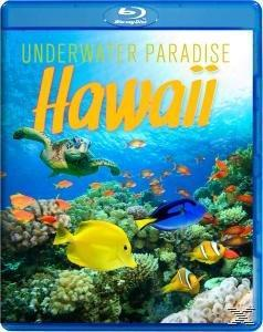 Underwater Paradise Hawaii