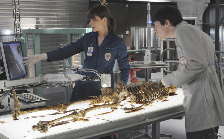 Bones Saison 6 Série TV