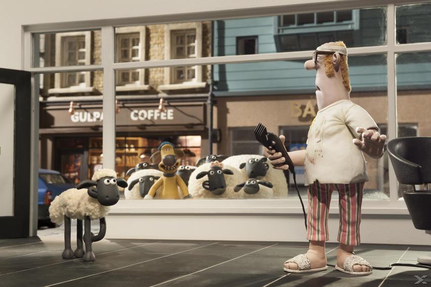 Shaun Le Mouton DVD